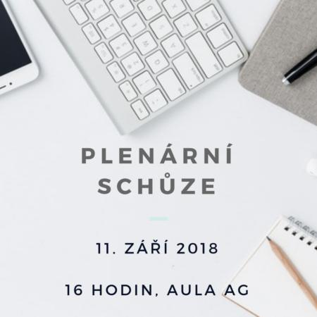 Plenarni_schuze