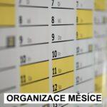 Organizace2